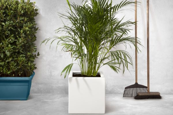 The Enjoyplanter smooth planter white - homepage small